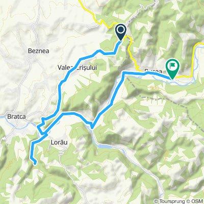 etapa 1 - austrieci