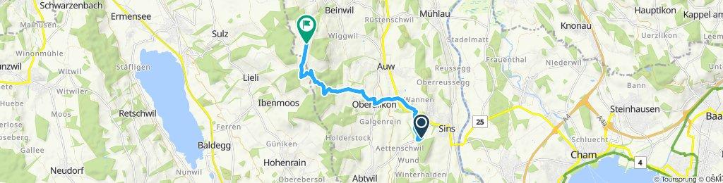 Einfache Fahrt in Bachtal