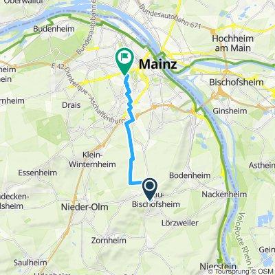 Gemütliche Route in Mainz