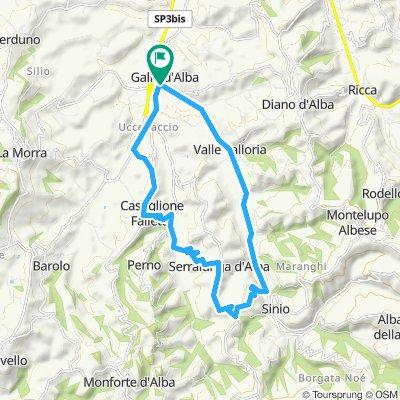 Gallo - Castiglione Falletto - Serralunga - Valle Talloria