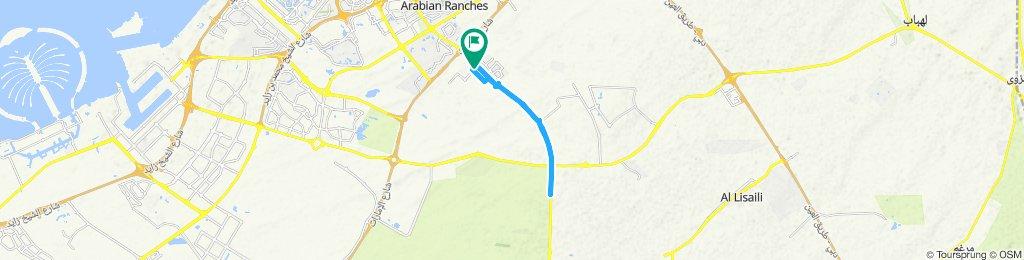 Easy ride in Dubai