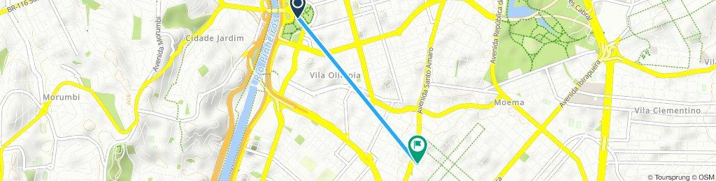 Passeio rápido em São Paulo2