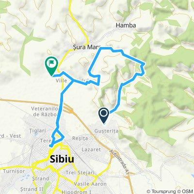 Sibiu - Gusterita - Viile Sibiului