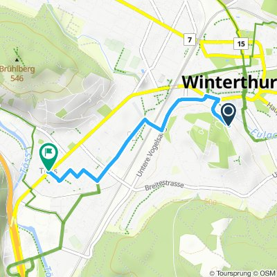 Töss Winterthur