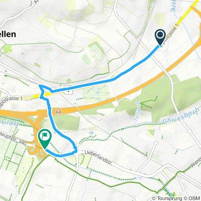 Paseo rápido en Dübendorf
