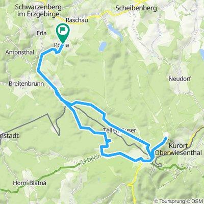 Fichtelberg durch den Wald Rennrad