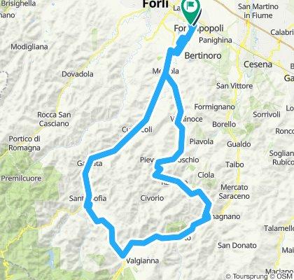 SABATO 06 LUGLIO Finocchio+Carnaio
