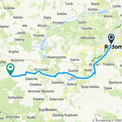 Pałac Borkowice propozycja 2019
