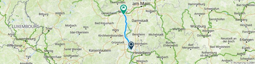 Gerade Fahrt nach Mainz