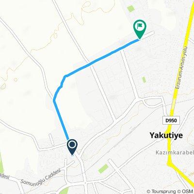 Moderate route in Yakutiye