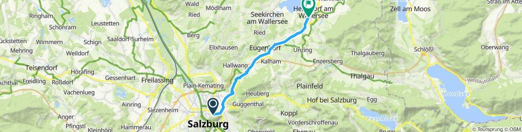 Gerade Fahrt in Henndorf am Wallersee