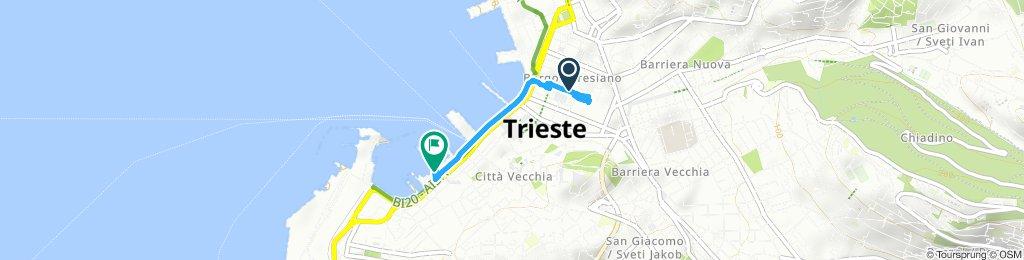Moderate Route in Trieste
