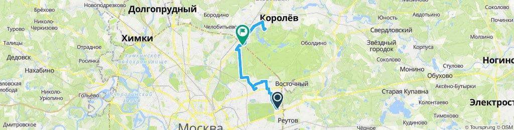 Облачно-сухие влокурьерские поездки Гольяново -> Королёв