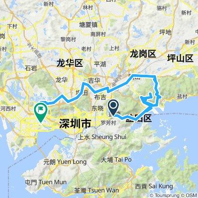 Shenzhen_loop_NE
