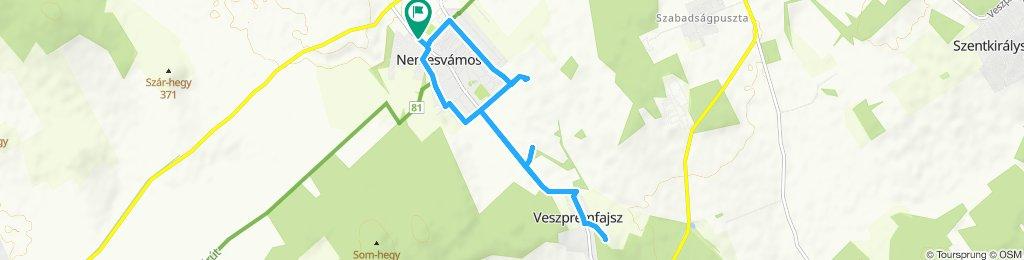 Balaton-Nordufer Tag1: Nemesvámos-Veszprémfajsz