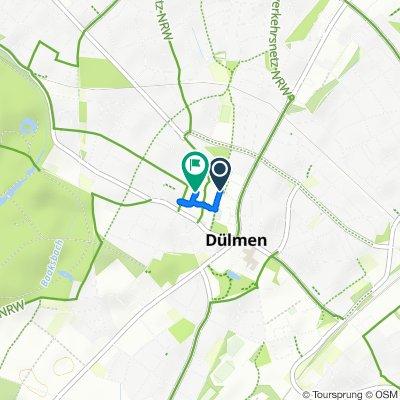 Radtour von Haltern am See nach Dülmen und zurück (Teil 2)