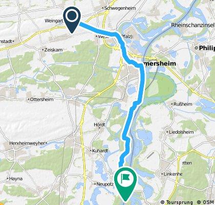 Weingarten-Fähre Leimersheim