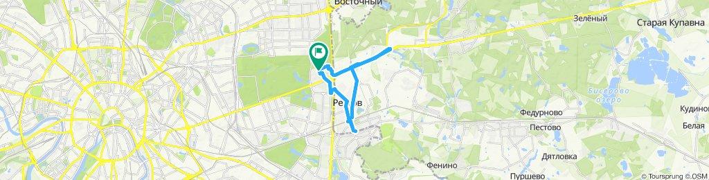 Велокруьерские ездки 22 07 2019 Балашиха Объездное шоссе