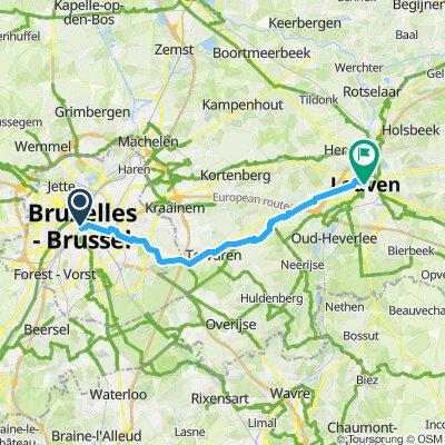 Lovanio Bruxelles