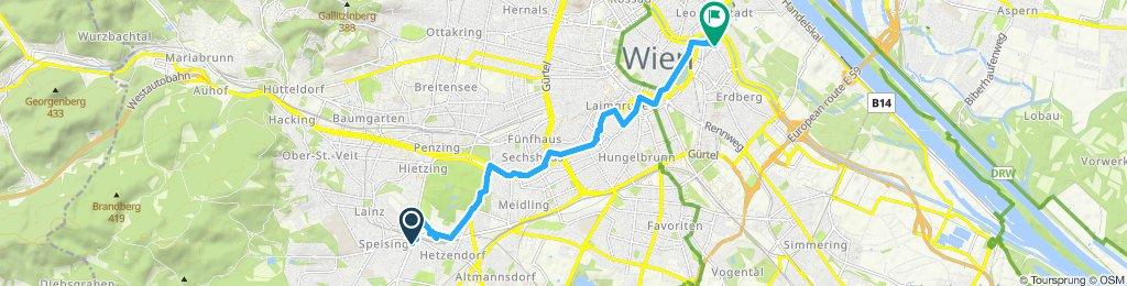 Einfache Fahrt in Wien