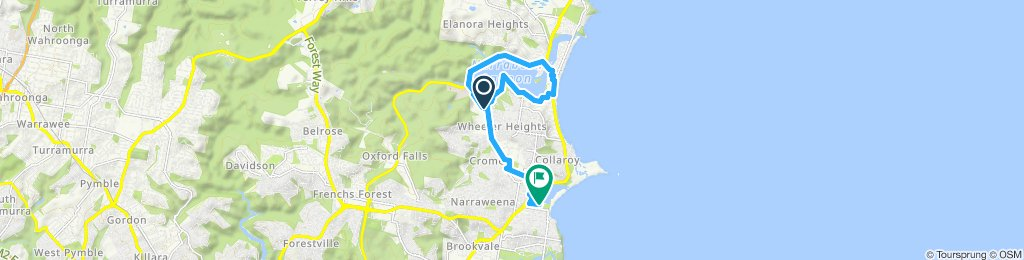 Dee Why to Narranbeen Lakes return