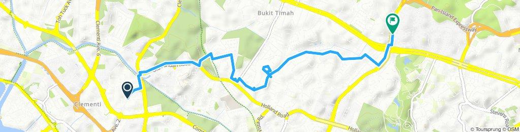 Slow ride in Bukit Timah