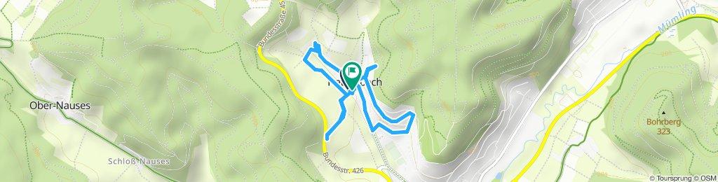 Gemütliche Route in Höchst im Odenwald
