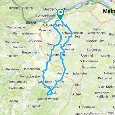 011g1 Ingelheim - Wöllstein - Nack - Flonheim - Wolfsheim - Ingelheim