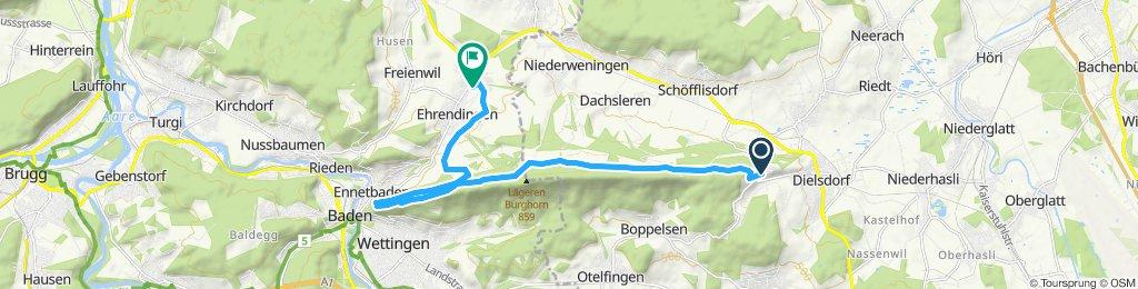 Rückfahrt Regensburg - Ehrendingen