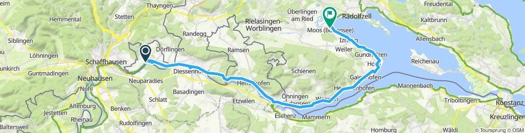 Büsingen - Moos