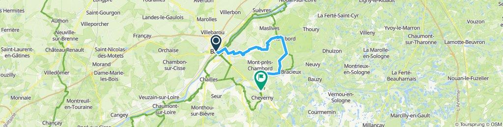 Blois - Cheverny