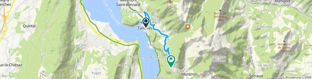 up the Col de la Forclaz