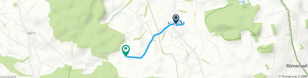 Einfache Fahrt in Neudorf