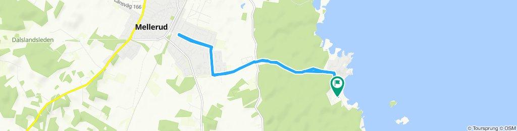 Moderate Route in Mellerud