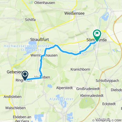 Gemütliche Route in Ringleben