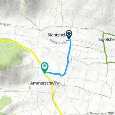 Steady ride in Ammerschwihr