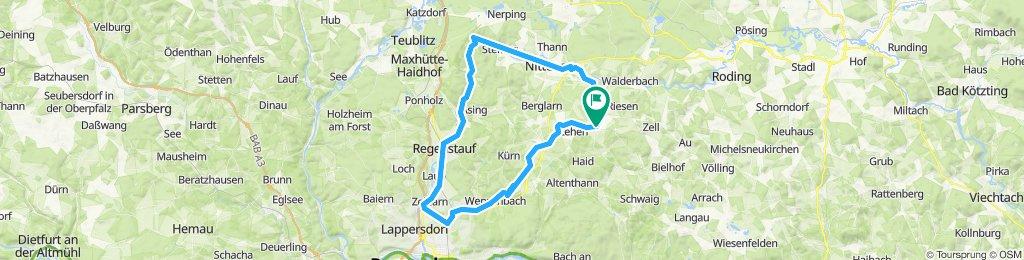 Von Wald ins Regental nach Regensburg und über Wenzenbach zurück.
