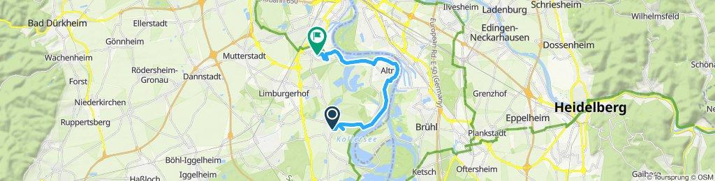 Langsame Fahrt in Ludwigshafen