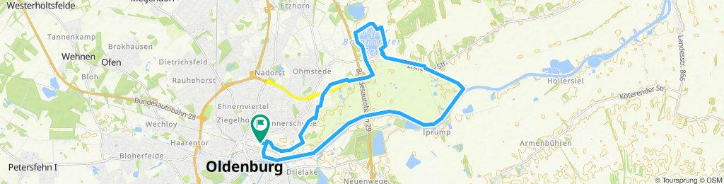 Inlinerstrecke Bornhorst