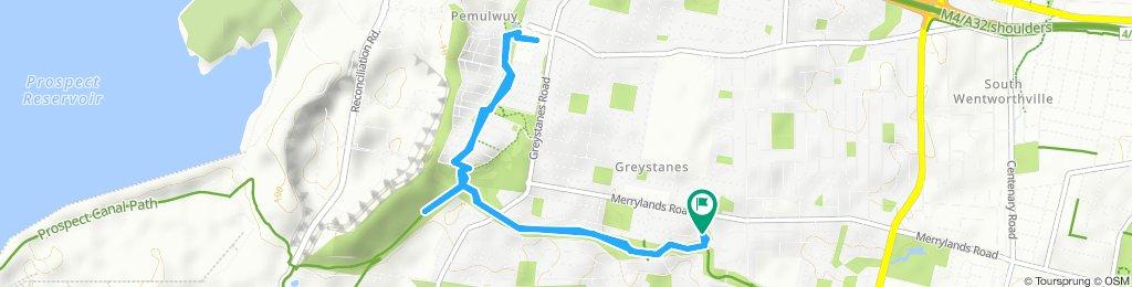 Easy ride in Greystanes
