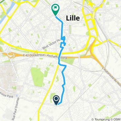 Itinéraire modéré en Lille