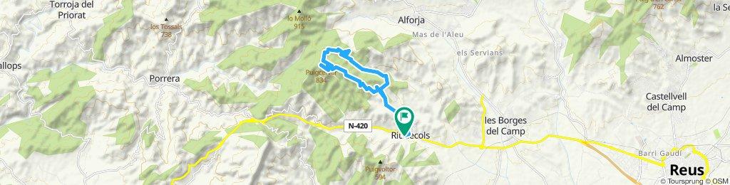 14.5 km puigcerver