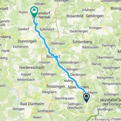 Moderate Route in Oberndorf am Neckar