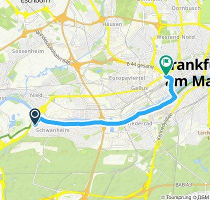 Einfache Fahrt in Frankfurt am Main
