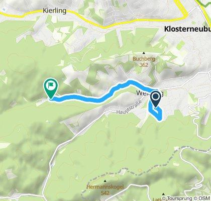 Langsame Fahrt in Weidling