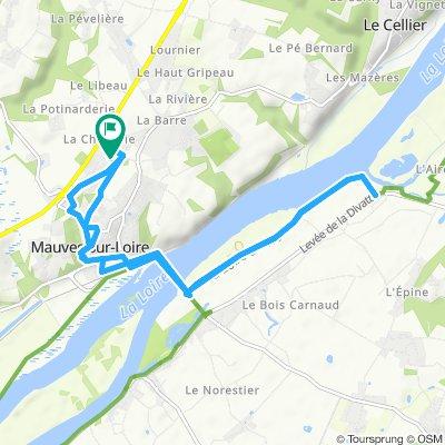 Mauves-sur-Loire bord de Loire
