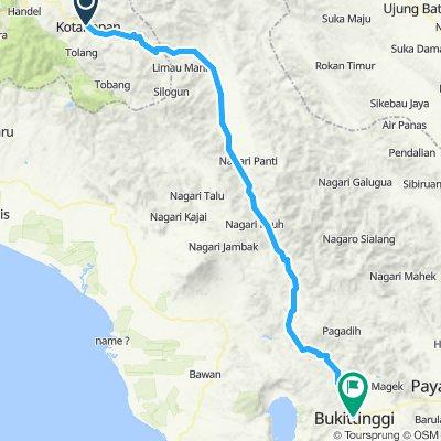 Sumatra-Java-Bali 07, Indonesien, Kota Nopan - Bukittinggi, 176 km