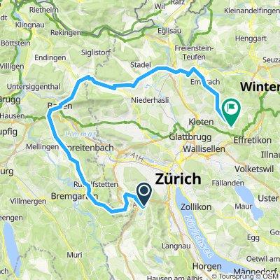 Wettswil-Nüeri-Nordroute