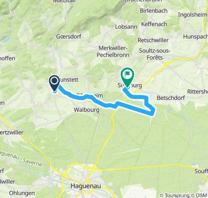 Itinéraire modéré en Surbourg