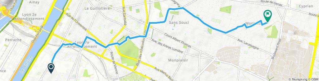 Itinéraire modéré en Lyon